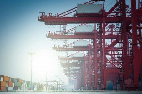 Empresa de dedetização para portos